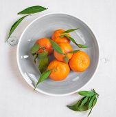 image of clementine-orange  - Clementine tangerines with green leaves on white wooden background in a gray bowl - JPG
