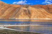 stock photo of extend  - Mountains and Pangong tso  - JPG