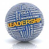 Business ledership concept