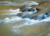 Water Still Life On A Wild River