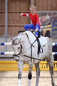 picture of big horse  - young girl is vaulting on a big white horse - JPG