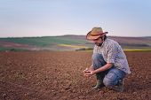 stock photo of farm land  - Male Farmer Examines Soil Quality on Fertile Agricultural Farm Land Agronomist Checking Soil in Hands - JPG