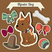 image of toy dogs  - Vector hipster chihuahua dog with a dog with a set of toys - JPG