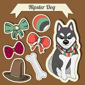 picture of toy dogs  - Vector hipster husky dog with a dog with a set of toys - JPG
