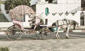 stock photo of carriage horse  - Elegant horse carriage on a Moroccan street - JPG