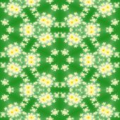 picture of mandelbrot  - Fractal floral pattern or texture with green background - JPG