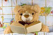 teddy-bear  reading a book