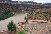 Colorado River Near Loma
