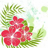 stock photo of hibiscus flower  - Flower vector abstract grunge background colorful illustration - JPG