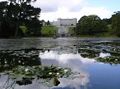 Powerscourt House And Lake
