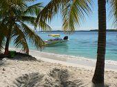 Cena tropical Island