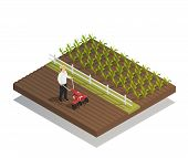 Farming Machinery Agricultural Equipment Isometric Composition With Hand Push Rotary Garden Cultivat poster