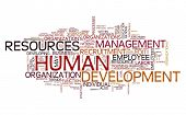 pic of human resource management  - HR  - JPG