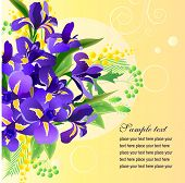 Vector greeting card with big bunch of  irises