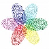 Color fingerprint flower vector