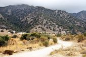 Hilly Landscape - Kos Island Greece
