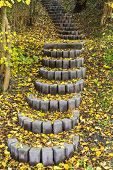 Autumn Stair Path, Scene With Stone Steps Stairs In Autumn Forest. The Stair Path In Autumn. Beautif poster