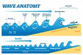 Wave Anatomy Vector Illustration. Water Movement Physics Explanation Scheme. Educational Circular Or poster
