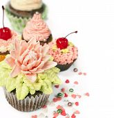 Cupcakes With Flowers From The Mastic