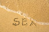 SEX - written in sand on beach texture - soft wave of the sea