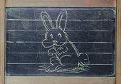 Ostern Hase auf blackboard