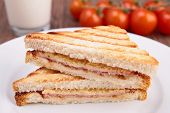 pic of toast  - grilled sandwich toast - JPG