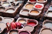 Fes leather tanneries, Morocco, Africa