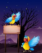 Illustration of two parrots near an empty board
