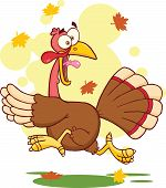 Turkey Escape Cartoon Character