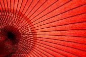 Japanese Oriental Umbrella
