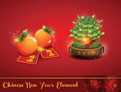 stock photo of mandarin orange  - Chinese New Year Elements 01 - JPG