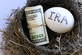 Nest With Money And Egg With Ira On It