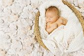 Baby Newborn Sleeping In Art Basket On White Leaves
