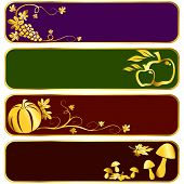 Gold Harvest Banners
