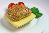 Sandwich with Cheese, Tomatoes and Basil