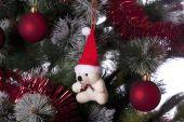 Detail Pine Christmas