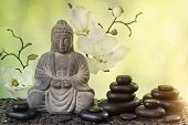 foto of buddha  - Buddha in meditation - JPG
