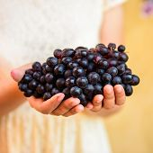 red grape in woman's hand