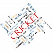 Cricket Word Cloud Concept Angled