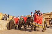 JAIPUR, INDIA - NOVEMBER 18, 2012: Tourists riding elephants in Amber fort, Rajasthan, Elephant ride is a popular entertainment for tourists in India