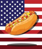 Hot dog. America Flag background