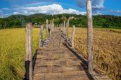 The bamboo bridge (zutongpae bridge)