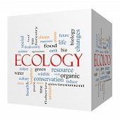 Ecology 3D Cube Word Cloud Concept
