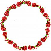 Frame Floral Abstract Pattern of Cowberries heap  isolated on white  background with copy space