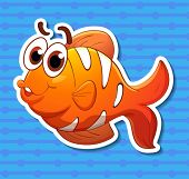 Illustration of a clownfish with background