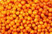 stock photo of sea-buckthorn  - Abstract background from fresh sea buckthorn berries - JPG