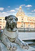 Lion stone statue on Piazza Pretoria in Palermo, Sicily, Italy.