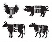 monochrome illustration of four farm animals