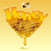 image of honeycomb  - Flowing honeycomb background with Honey letters and a bee - JPG