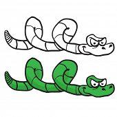 image of green snake  - green snake cartoon isolated on white - JPG